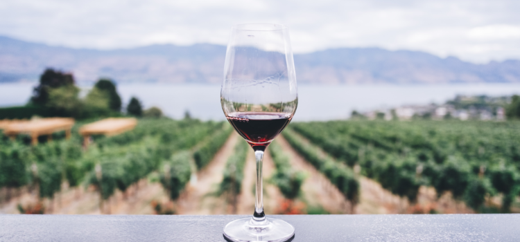 A glass of Malbec with Tule author Kelly Cain